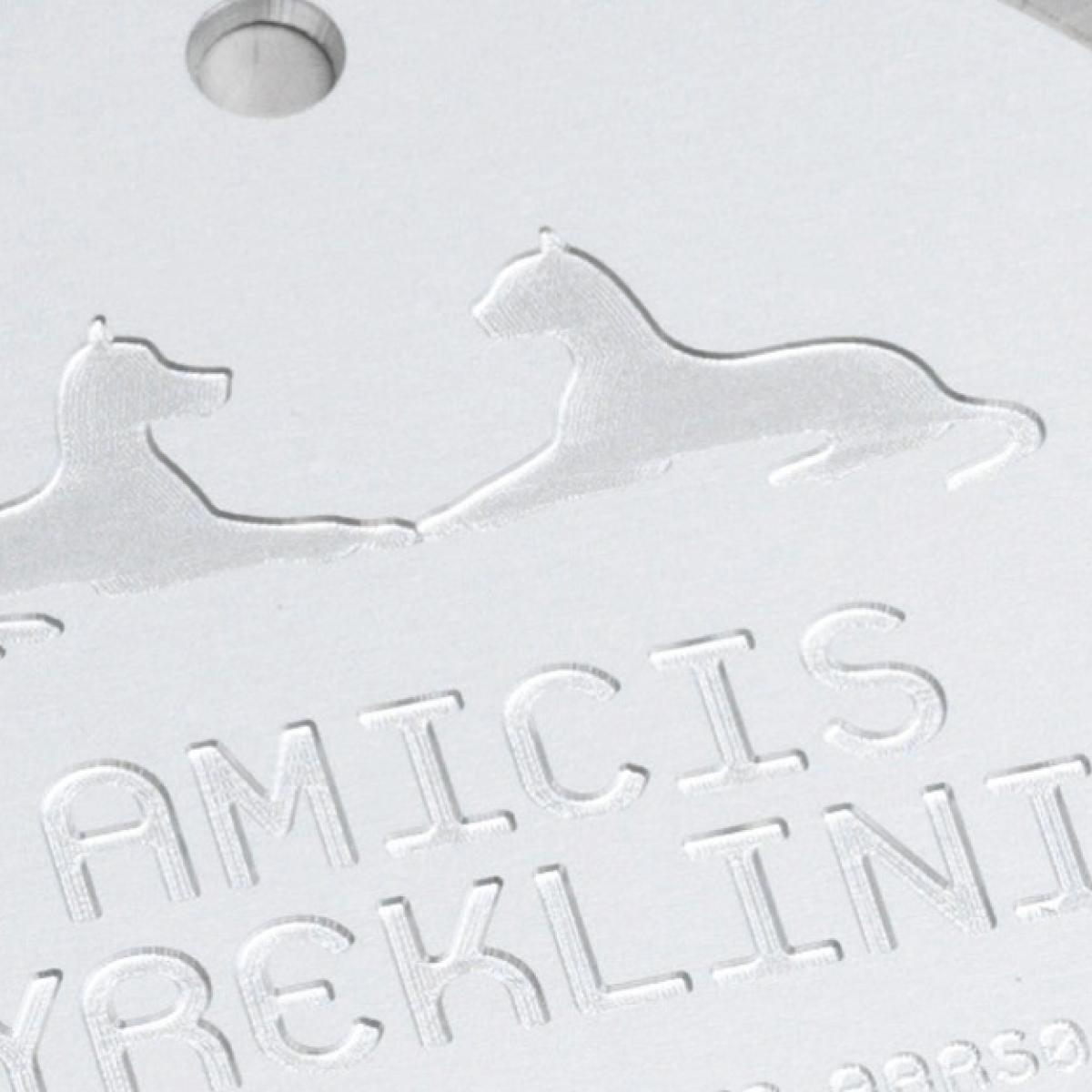 Amicis dyreklinik→